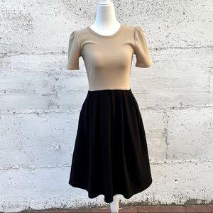 LULAROE Colorblock Amelia Dress